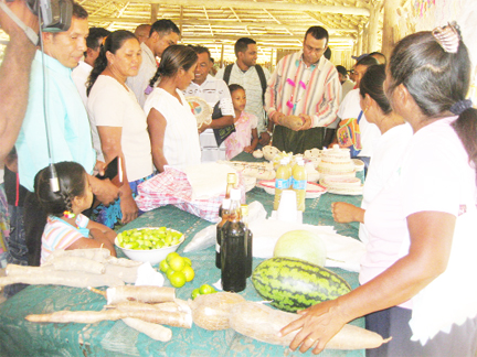 At the mini exhibition, Minister of Agriculture Robert Persaud examines a cassava grown in the community while Regional Chairman, Harrinarine Baldeo (partly hidden, at back) looks at a craft item.