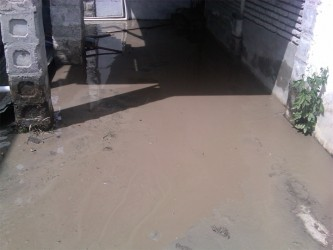A yard in Cowan Street covered by thick mud