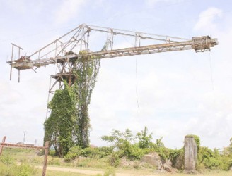 A lift that was once used in the Leonora Sugar Estate