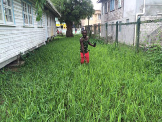 One of the parents showing the height of the grass