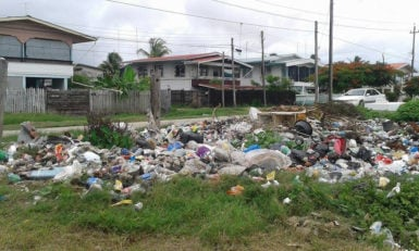 Residents and businesses dumped their garbage after it was not being collected.