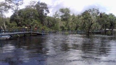 The main access bridge at Moraikobai partly under water. The high section is about 23 feet above the river bed. (GINA photo)