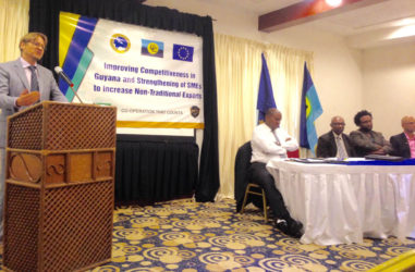 Joachim Vedsted Jakobsen speaking at the launching. Seated from left are: Lance Hinds, Percival Marie of CARIFORUM, Ruel Johnson of the Ministry of Education and Vishnu Doerga, chairman of the GCCI