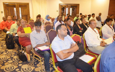 Participants at the National Consultation on the proposed regulations for Occupational Health and Safety in the manufacturing sector (GINA photo)