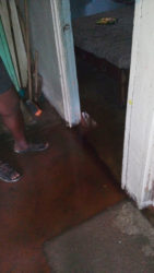 Sharon Harding stands in the water which settled at one of the bedroom doors.