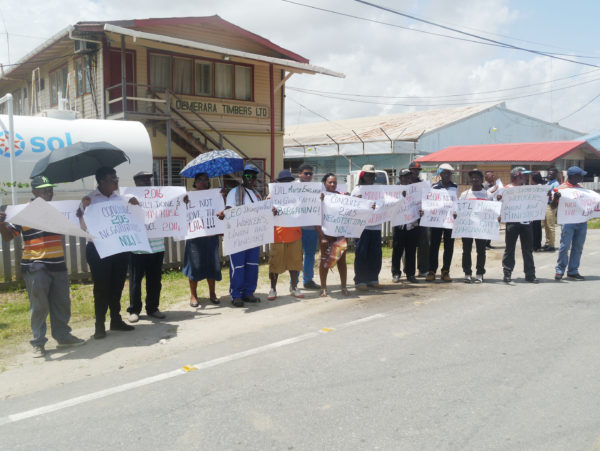 Workers of Demerara Timbers Limited protesting for wage increases in front of the company's Georgetown office yesterday