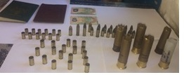 The live and spent ammo (Police photo)