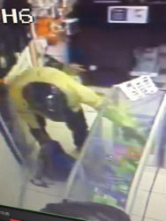 One of the bandits emptying one of the glass cases into his bag.