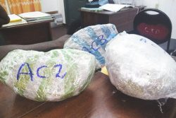 The three parcels of cannabis that were allegedly found in Juel Connell's possession.